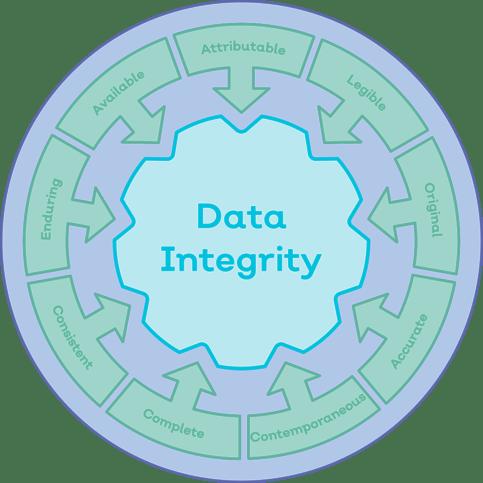 Data Integrity-1