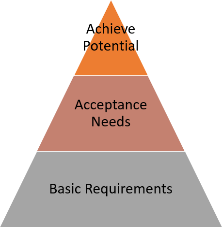 Vendor_software_requirements.png