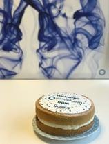 cake nanopharm