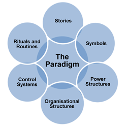 the cultural web Originating a cultural web it is necessary for those taking part to understand the conceptual basis of the cultural web and its links to strategy development in the organisation.